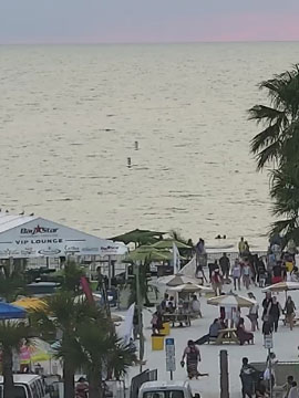 Live Cam from Crabby's Dockside, Clearwater Beach, FL