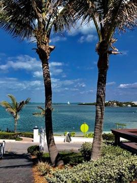 The Abaco Inn Webcam in Bahamas Caribbean Islands