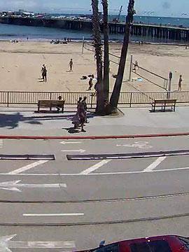 Dig Santa Cruz Main Beach Live Cam Volleyball