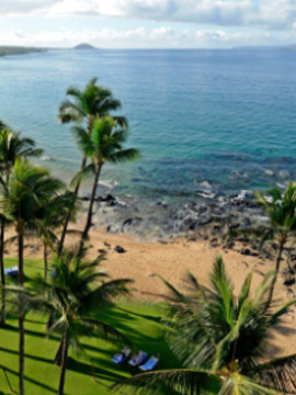 Live Webcam Beaches Maui Hawaii