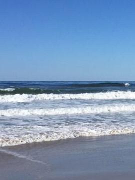 California Beach & Surf Webcams - Beach Cams USA