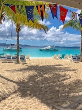 Soggy Dollar Bar Live Webcam BVI Caribbean Islands