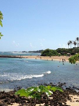 Turtle Bay Kuilima Cove Cam Oahu Hawaii